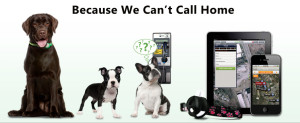 pet-trackers-300x123 pet-trackers
