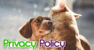 privacy-policy-1-300x162 Privacy Policy