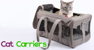 cat-carriers-300x162 Cat Carriers