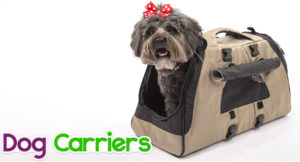 dog-carriers-300x162 Dog Carriers