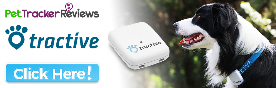 tractive-gps-pet-tracker Tractive GPS Pet Tracker Review